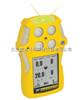 QT-XW00氧气\可燃气体检测仪