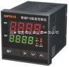 HAD-XMT615智能溫控儀