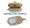 SBD1101-YQL50B1森本防爆灯 SBD1101-YQL50B1免维护节能防爆吸顶灯 SBD1101-YQL50B1批发价格