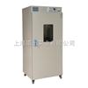 GR-420数显热空气消毒箱/博迅微电脑热空气消毒箱