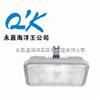 NFC9175-WJ40海洋王无极顶灯 NFC9175 长寿顶灯 NFC9175-WJ40价格,海洋王厂家