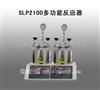 河南直销SLP2100多功能反应器