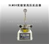世纪森朗专利生产SLM50实验室高压反应器