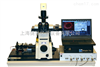 FLIM系统压电平台扫描型FLIM系统