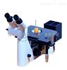 LEICA DMILM徕卡倒置金相显微镜