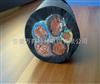 YCW耐油橡套电缆2*2.5