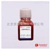 TX0030脱纤维绵羊血(无菌)  Solarbio血清产品现货供应