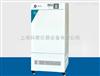 DKB-2006【上海精宏】 DKB-2006 低温恒温槽 低温水槽-10~99 ℃