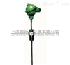 上海仪表三厂WRNT2-31双支轴承热电偶