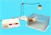 ZC/XHJY小动物活动记录仪