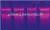 BCIP-NBT法地高辛杂交检测试剂盒