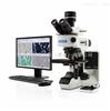 OLYMPUS 奥林巴斯金相显微镜BX53M