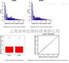 上海miRNA测序实验外包