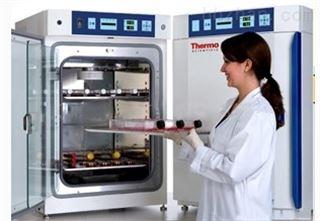 311美国进口品牌Thermo 311型二氧化碳培养箱